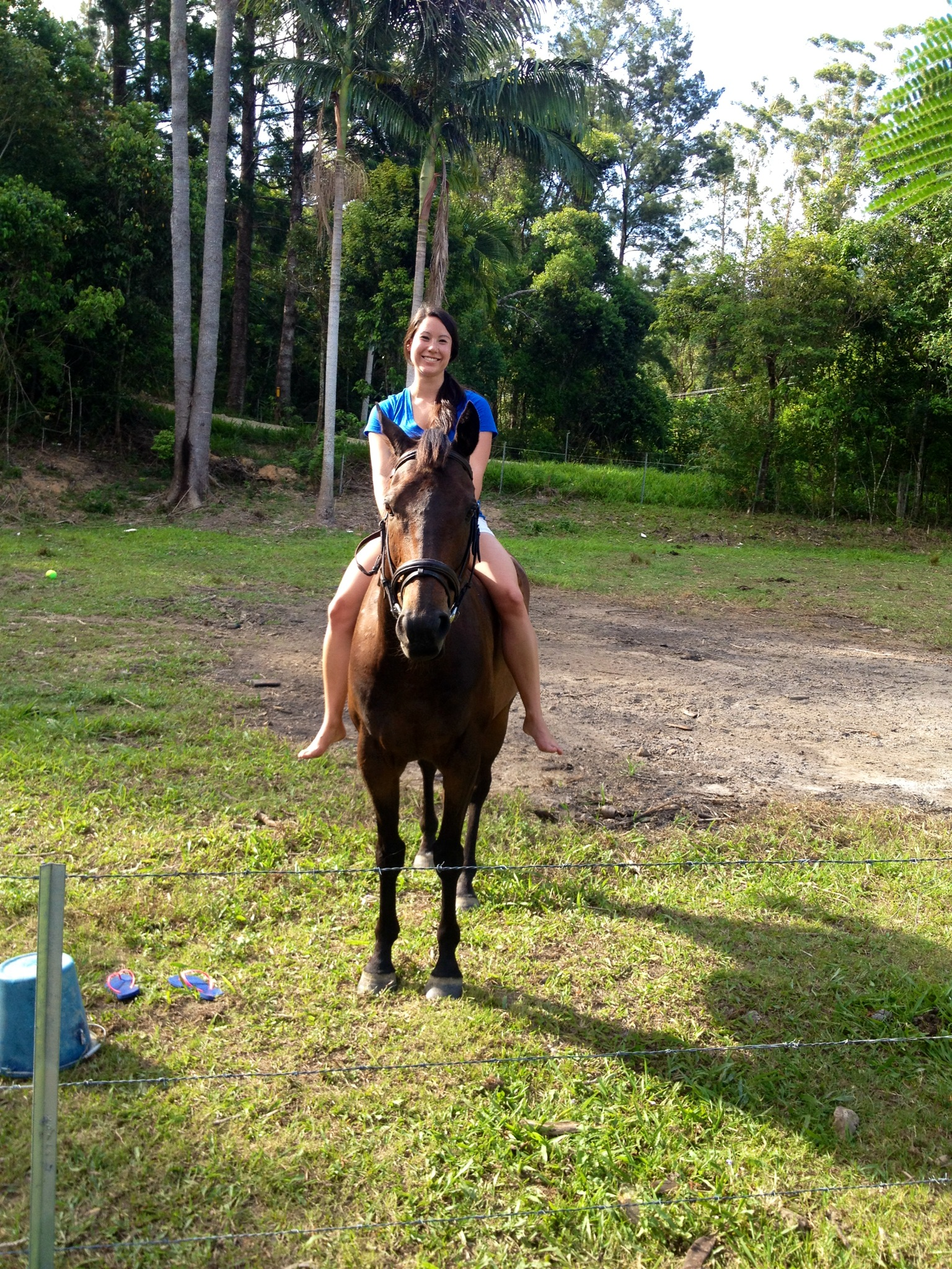 Photo 4 3 for Where to go horseback riding near me