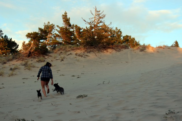 running through sand dunes with dogs in Florence Oregon