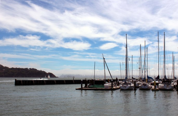 view of san francisco and boats from tiburon california