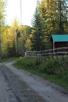 the road to beaver lake homestead in clearwater bc