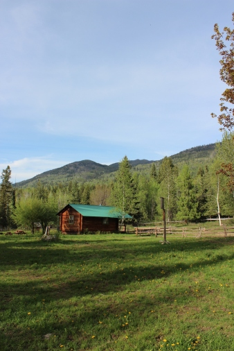 beaver lake homestead cabin in front of mountains
