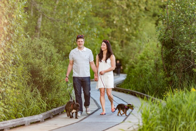 engaged couple walking dogs in bc